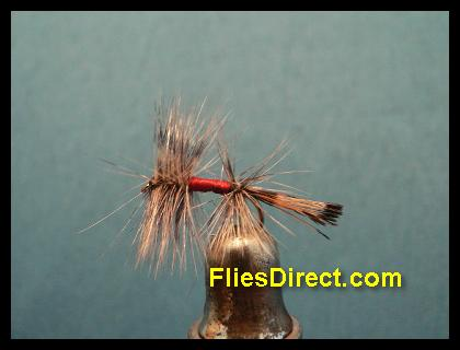 BADGER HACKLE PEACOCK