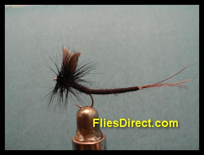 BLACK GNAT EXTENDEDBODY MAYFLY