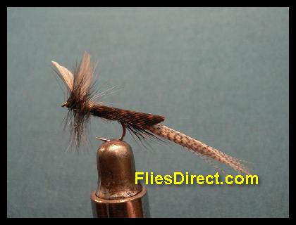 BLUE DUN MAYFLY