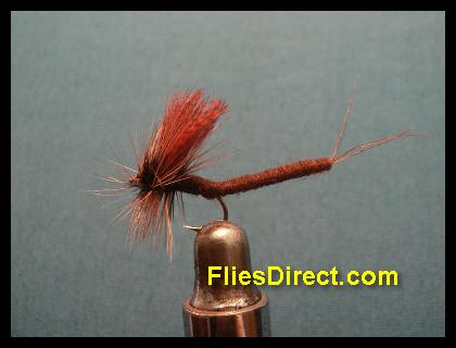 BROWN DRAKE EXTENDEDBODY MAYFLY